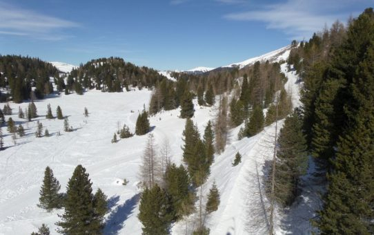 Snowboardtage