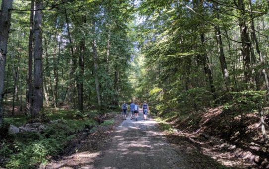 Wandern Ebrach